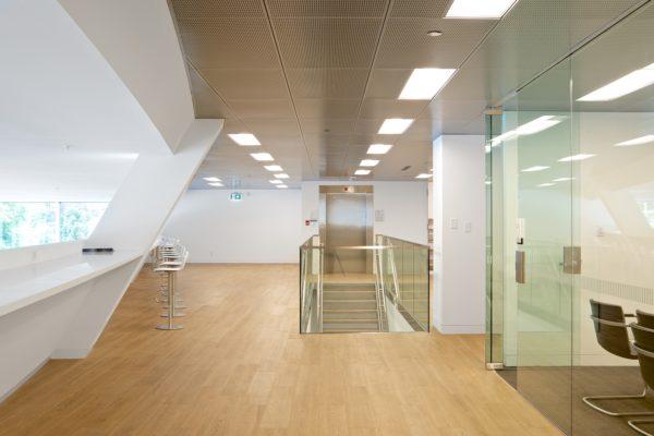 RWC_T1A8780-600x400 Drywall & Steel Stud Installation Services