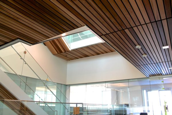 Robertson-Walls-Ceilings-Completed-Projects-Commercial-Buildings-Surrey-Works-Yard-2-600x400 Drywall & Steel Stud Installation Services