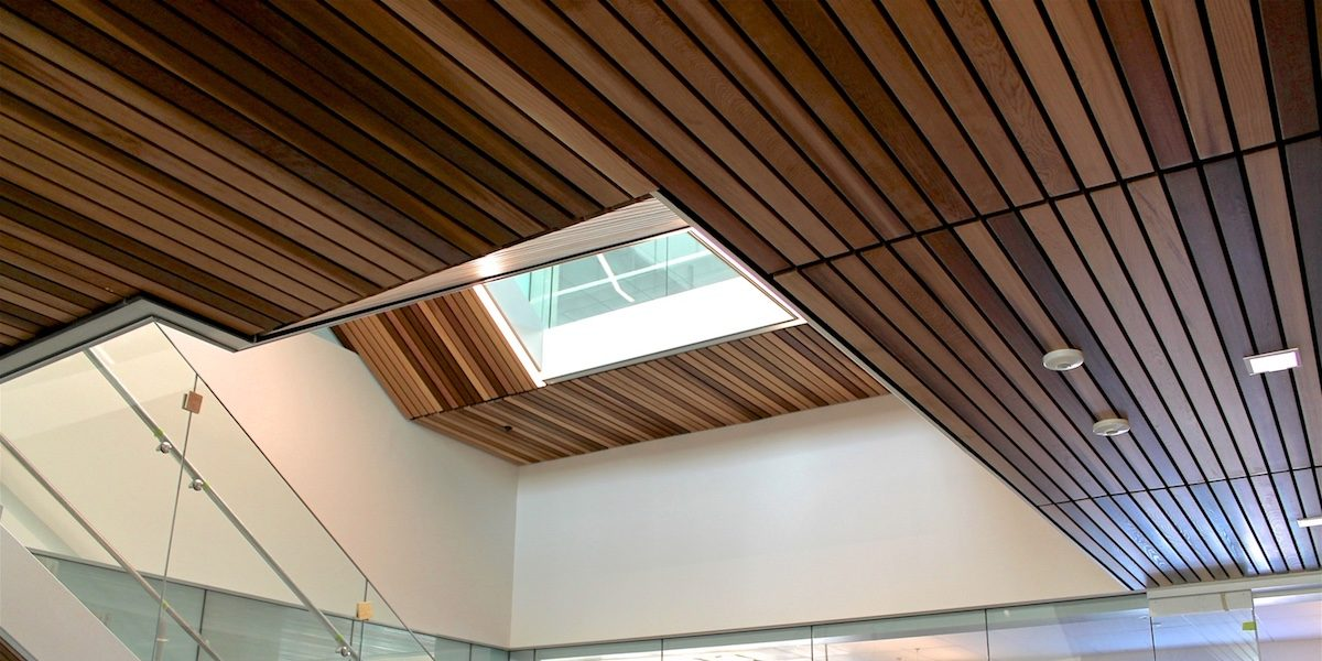 Robertson-Walls-Ceilings-Completed-Projects-Commercial-Buildings-Surrey-Works-Yard-Services-1200x600 Our Services